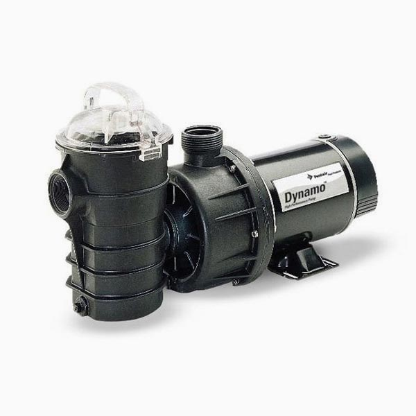 Pentair Dynamo Pump 1 HP Two Speed 115V 340204